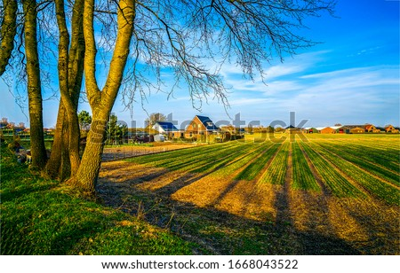 Spring agriculture farm field landscape. Agriculture farm field in spring. Farm house on agriculture farm field spring