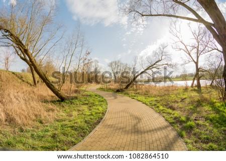 spring alley of trees. Opole Poland. im.Armii Krajowej Zdjęcia stock ©