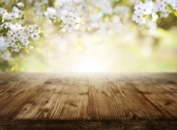 Spring background with cherry blossoms and sun in front of an empty wooden table for a concept