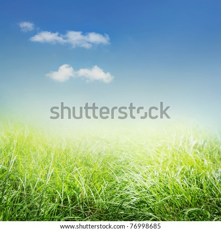 Spring background with grass and blue sky