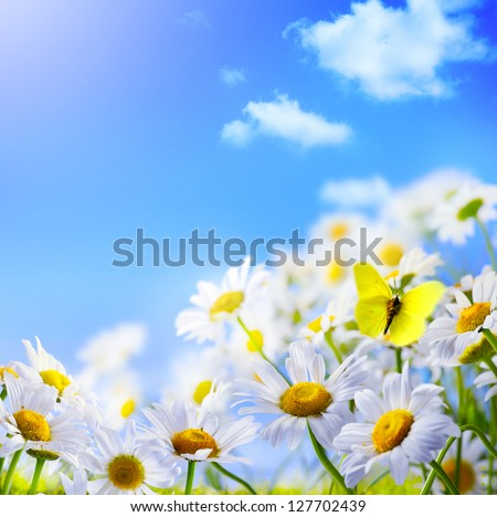 spring background with  on a background of blue sky