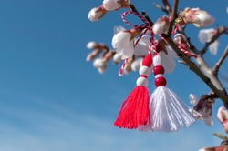Spring background with white blossom and Bulgarian symbol of spring - martenitsa. March 1 tradition white and red cord martisor and spring flowers. Cheerful concept of beginning of spring. Copy space