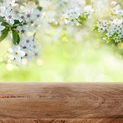 Spring background with white cherry blossoms and rustic wooden table for a easter decoration