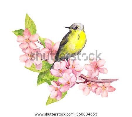 spring bird on blossom branch...