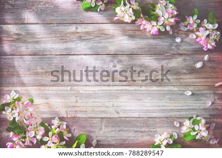 Spring blooming branches on wooden background. Apple blossoms #788289547