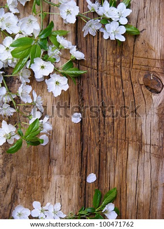 Spring blossom branch on a wooden table