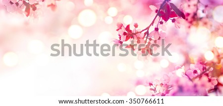 Spring border or background art with pink blossom. Beautiful nature scene with blooming tree and sun flare. Sunny day. Spring flowers. Beautiful Orchard. Abstract blurred background. Springtime #350766611