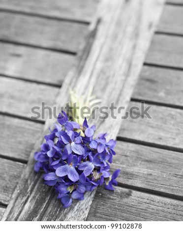 spring bouquet of violets on old garden table