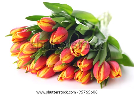 Spring bouquet tulips on white isolated background