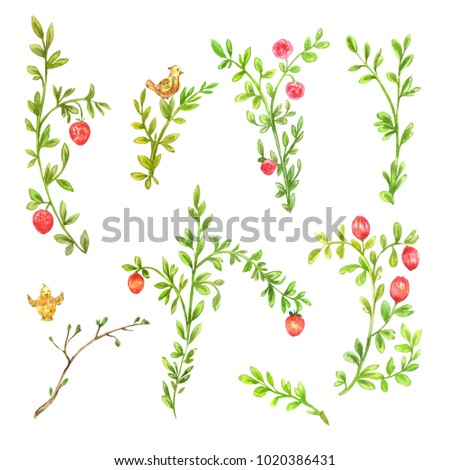Spring branches with pink flowers. Set of watercolor floral elements