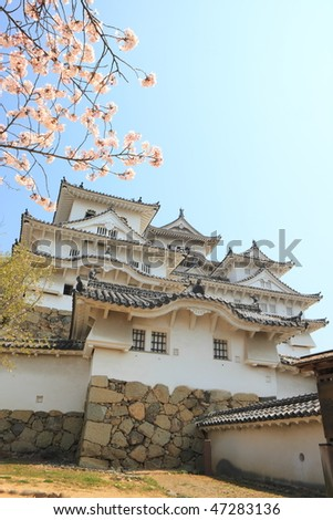 spring cherry blossoms and the Himeji Castle, Japan
