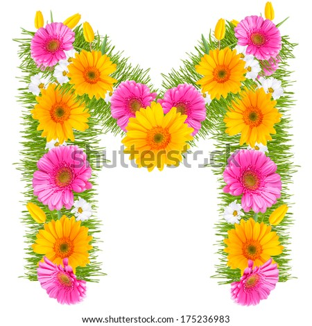 Free Photos Letter M Red Flowers Alphabet Avopix Com