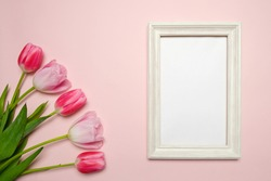Spring composition with tulips on pink background, picture frame to insert your information.