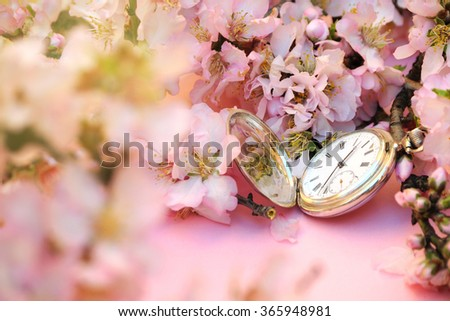 Spring concept. Almond flowers with vintage silver pocket watch.
