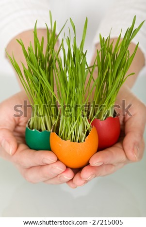 Spring concept - grass sprouting from colorful easter eggs in woman hands
