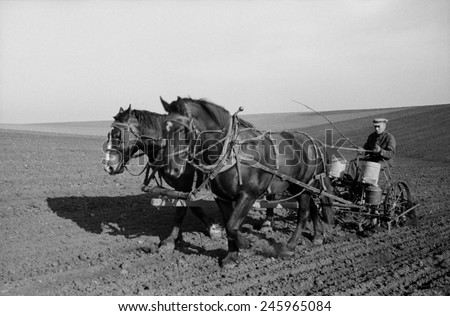 Spring corn planting in Jasper County, Iowa. Two large work horses pull the farmer and his seed drill across the vast field. Stockfoto ©