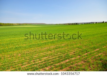 Spring Country Fields Annapolis Valley Nova Scotia Canada - Shutterstock ID 1043356717