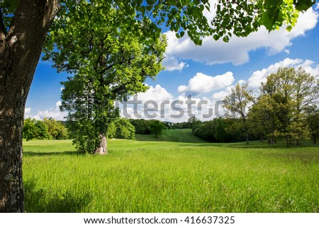 spring country landscape #416637325