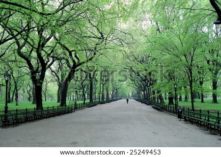 new york central park wallpaper. central park new york. in