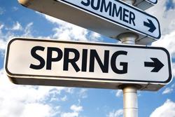 Spring direction sign on sky background