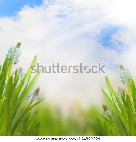 Spring Easter background with beautiful blue flowers - summer border with sky