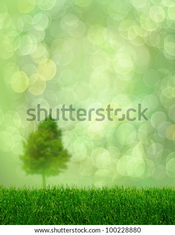 Spring fantasy with green grass and de-focused tree on bokeh background