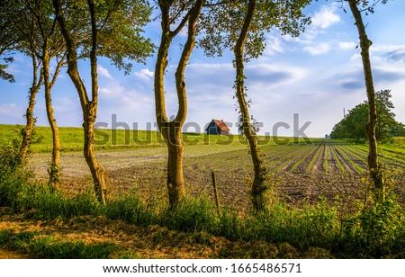 Spring farm field scene. Farm house field in spring. Spring farm field landscape. Farm field in springtime