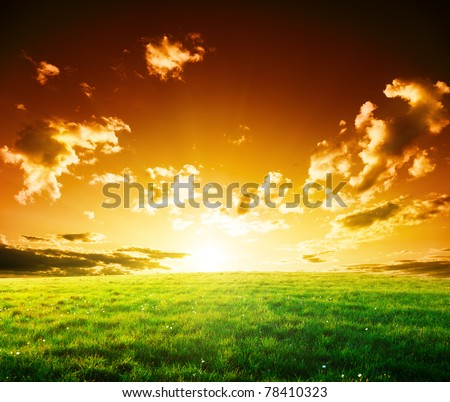 spring field of grass and sunset - stock photo