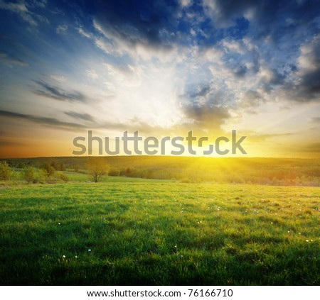 spring field of grass in Russia and sunset - stock photo