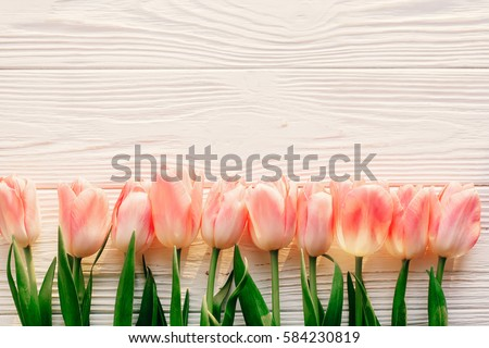 spring flat lay. pink tulips on white rustic wooden background flat lay. top view of flowers in soft morning sunlight with space for text. hello spring. banner and border