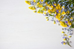 Spring floral background with forget-me-nots, pansies and primroses. Space for text.