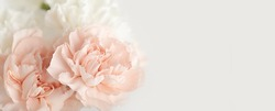 Spring flower bouquet over light background with copy space. Bridal bouquet, online blog header