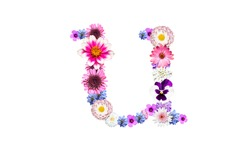 Spring flower letters, lowercase u of the alphabet