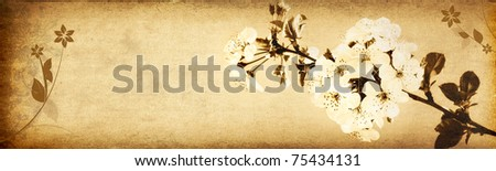 Spring flowers (grungy old paper texture banner)