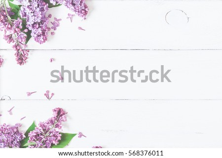 Spring flowers. Lilac flowers on white wooden background. Top view, flat lay #568376011