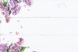 Spring flowers. Lilac flowers on white wooden background. Top view, flat lay, copy space