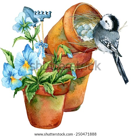 Spring flowers. Pansies in a clay pot, garden tools, and wagtail bird in a nest with eggs. watercolor