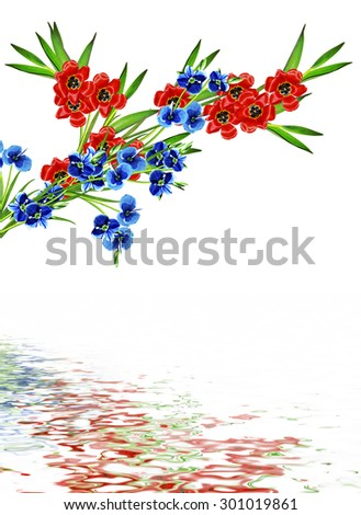 spring flowers tulips isolated on white background #301019861