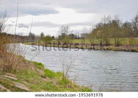 Spring forest river flow landscape