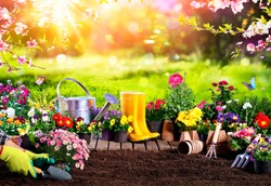 Spring Gardening - Flowerpots An Equipment In Sunny Garden