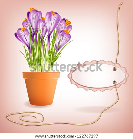 Spring Gardening. Garden flower pot with spring crocuses and label on rope with space for your text. Raster illustration. Vector file included in portfolio