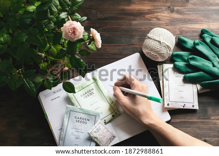 spring gardening planning, envelopes with seeds, gardening gloves against wooden table Сток-фото ©