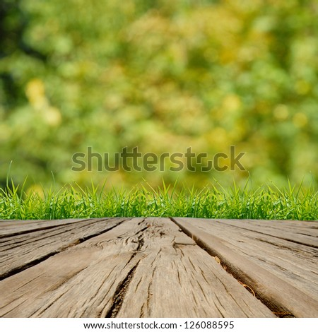 Spring green grass and sunlight with wood floor