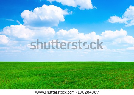 spring green meadow or field
