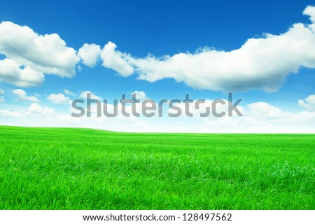 Spring green meadow under blue sky with clouds.