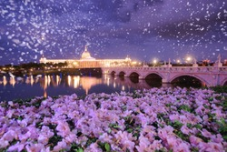 Spring illuminated cloudy moonrise Scenery of Olympus Bridge and Chimeimuseum reflected in pond & bush clockvine blossoms and pink poui petals floating is traditional French Romanticism style. Tainan,