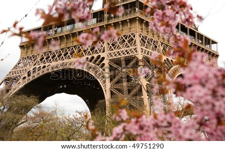 Spring in Paris. Bloomy cherry tree and the Eiffel Tower. Focus on the Eiffel Tower - stock photo