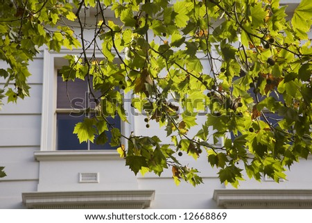 spring in the city - stock photo