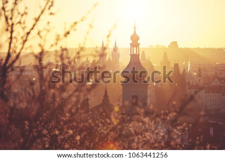 Spring in the city. Blooming trees against old town. Beautiful sunrise in Prague, Czech Republic #1063441256