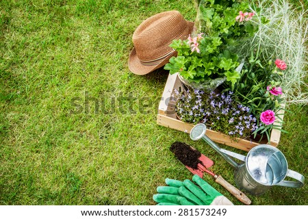 Spring In The Garden Flower Seedlings Gardening Tools